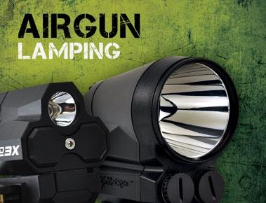 Airgun Lamping
