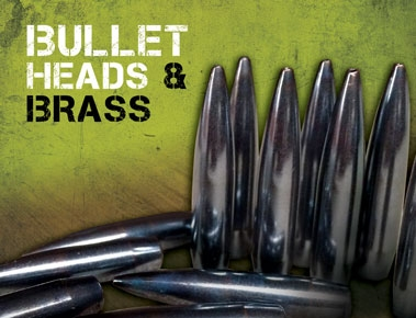 Bullets & Cartridge Cases