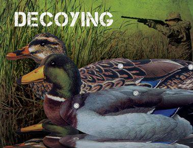 Decoying