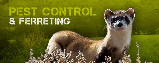 Pest Control & Ferreting