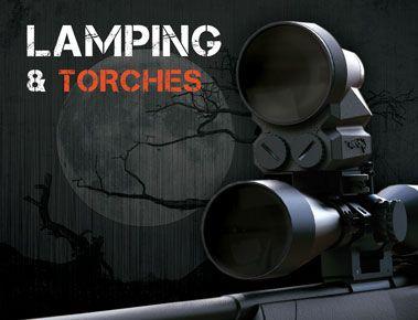 Lamping & Torches