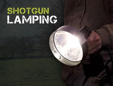 Shotgun Lamping