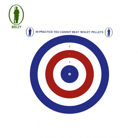 Bisley 17cm Economy Card Coloured Targets