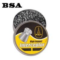 BSA Interceptor Hollow Point