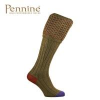 Pennine Ambassador Old Sage