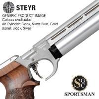 Steyr Evo10 E Compact