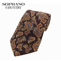 Sax Soprano Paisley Printed Silk Shooting Tie