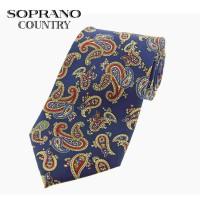 Sax Soprano Paisley Large Printed Silk Shooting Tie